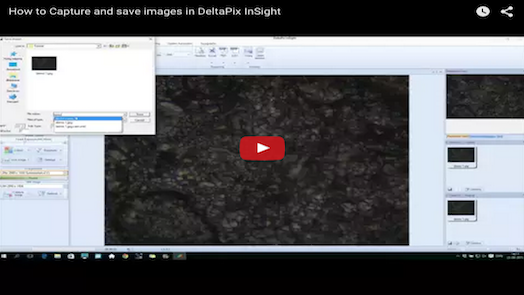 DeltaPix InSight – How to Capture and save images in DeltaPix InSight