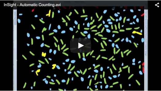 DeltaPix InSight – Automatic Counting Setting up and running the automatic counting algorithm