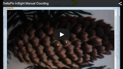 DeltaPix InSight – Manual Counting Counting by clicking on the live image