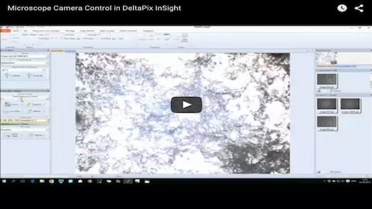 DeltaPix InSight – Microscope Camera Control in DeltaPix InSight