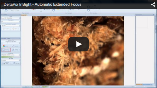 DeltaPix InSight – Motorized Extended Focus Shows how easy it is to do an automatic Extended Focus using the Z-motor control.