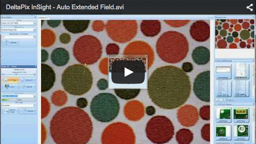 DeltaPix InSight – Automatic motorized Stitching – 2 Shows how incredibly easy it is to do an automatic Extended Field (Stitching) using the motor control.