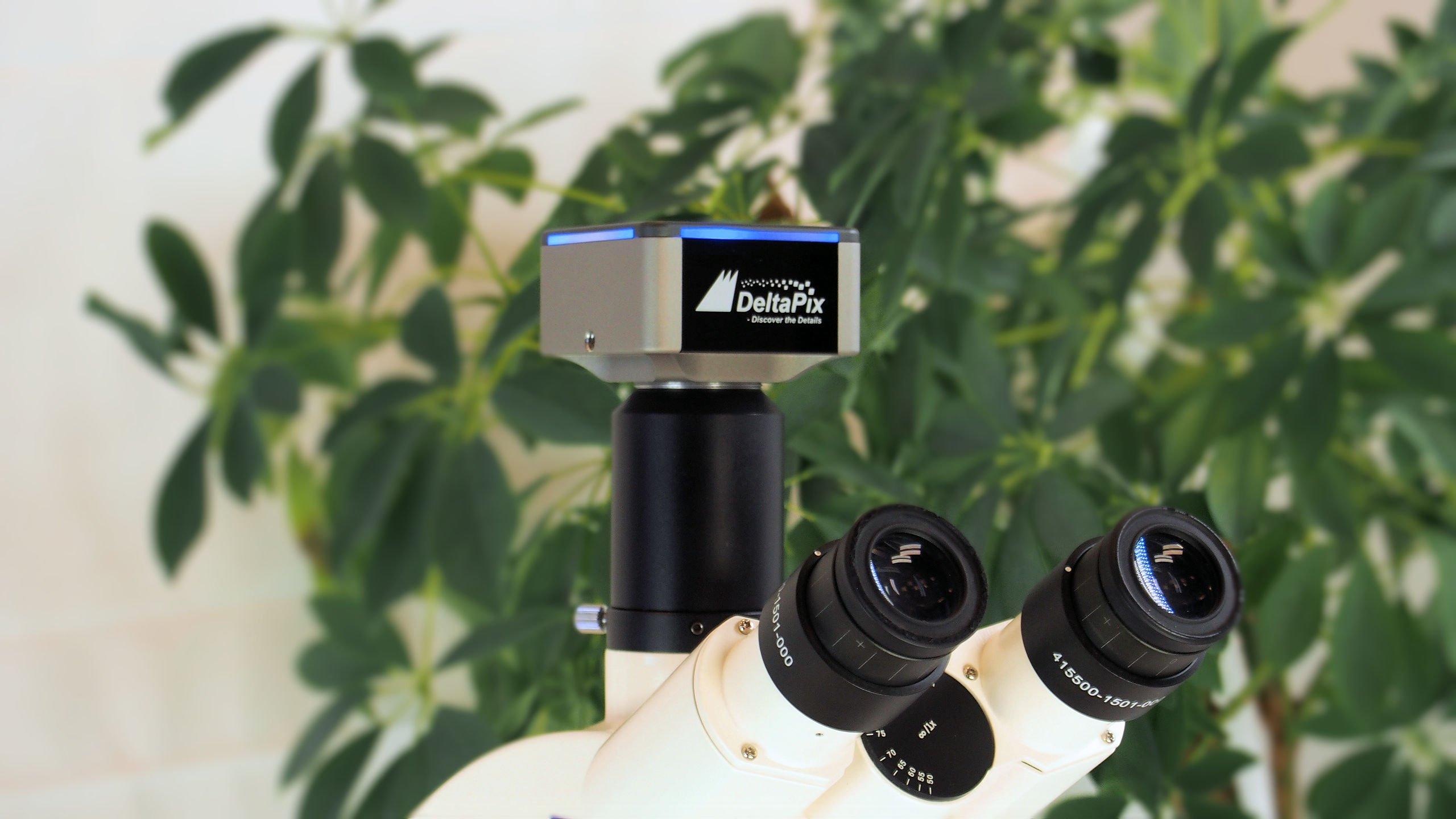 DeltaPix microscope camera on Olympus microscope