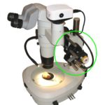 Nikon microscope with DeltaPix camera and automation