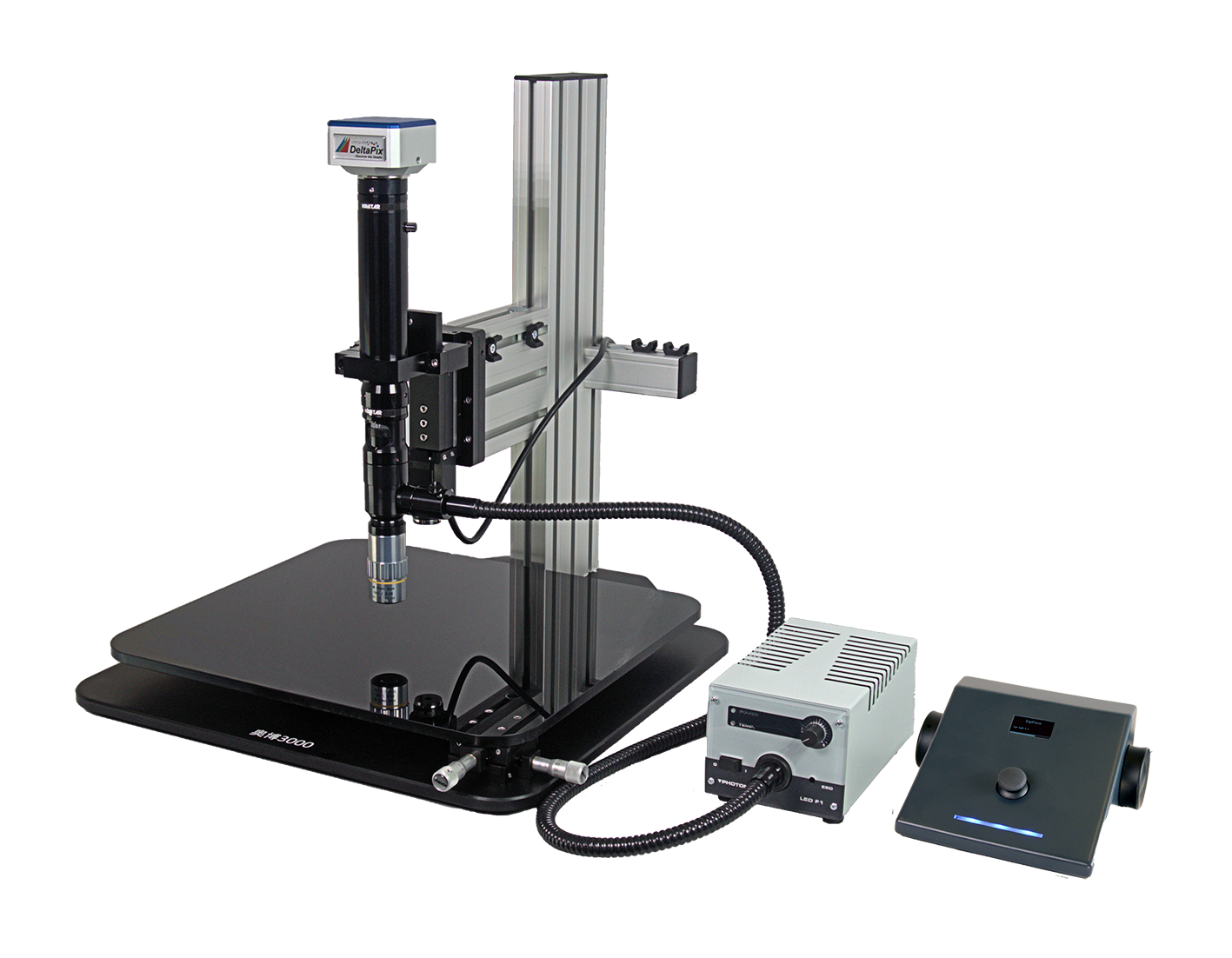 digital microscope 3D